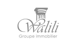 GroupeWalili-logo
